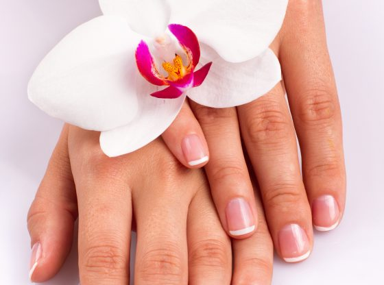 Hands and orchid over isolated