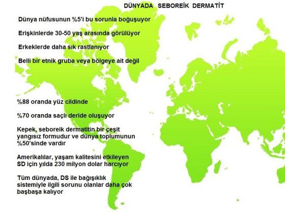 world-map-1451584-1278x850